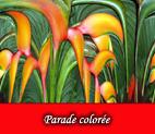 Flore colorée en images numériques et digitales, graphismes et infographie par François-Régis Hoareau
