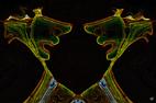 Effets miroir par jeux de symétrie pour réalisations de tableaux numériques et digigraphiques, graphismes et infographie par François-Régis Hoareau