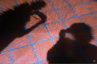 Jeux sur portraits en images numériques et digitales à partir de photographies, graphismes et infographie par François-Régis Hoareau photographe artiste infographiste digigraphe