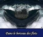 Visions étranges en images numériques et digitales infographiques, Digigraphie et graphisme par François-Régis Hoareau