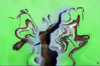 Photographies combinées pour réalisations de tableaux et autres éléments décoratifs `design` et harmonieux par François-Régis Hoareau photographe artiste infographiste digigraphe